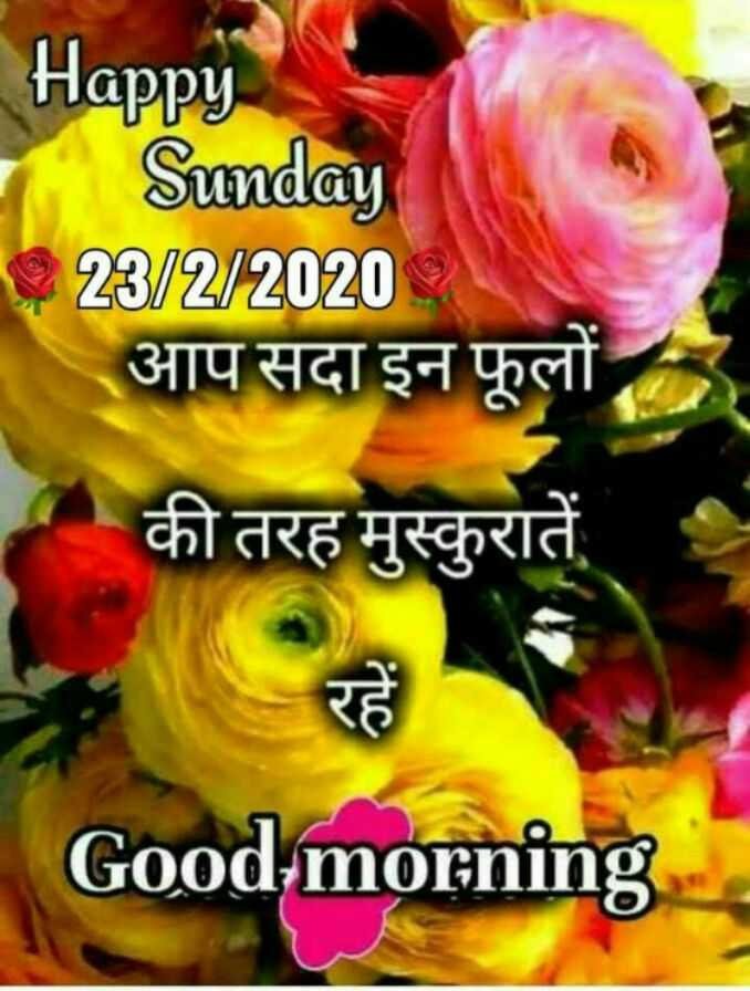 🌷शुभ रविवार - Happy Sunday 23 / 2 / 2020 आप सदा इन फूलों की तरह मुस्कुरातें Good morning - ShareChat