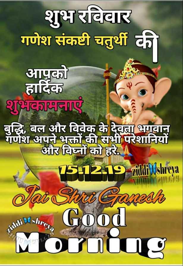 🌷शुभ रविवार - शुभ रविवार गणेश संकष्टी चतुर्थी की आपको हार्दिक शुभकामनाएं बुद्धि , बल और विवेक के देवता भगवान गणेश अपने भक्तों की सभी परेशानियों और विघ्नों को हरे . 15 - 12 - 19 mithily slureta Jai Shu Ganesh . Good Mornine Shreya iddi - ShareChat