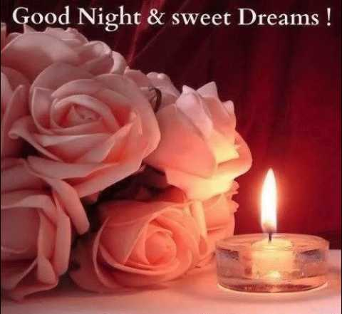 🌙 शुभरात्रि - Good Night & sweet Dreams ! - ShareChat