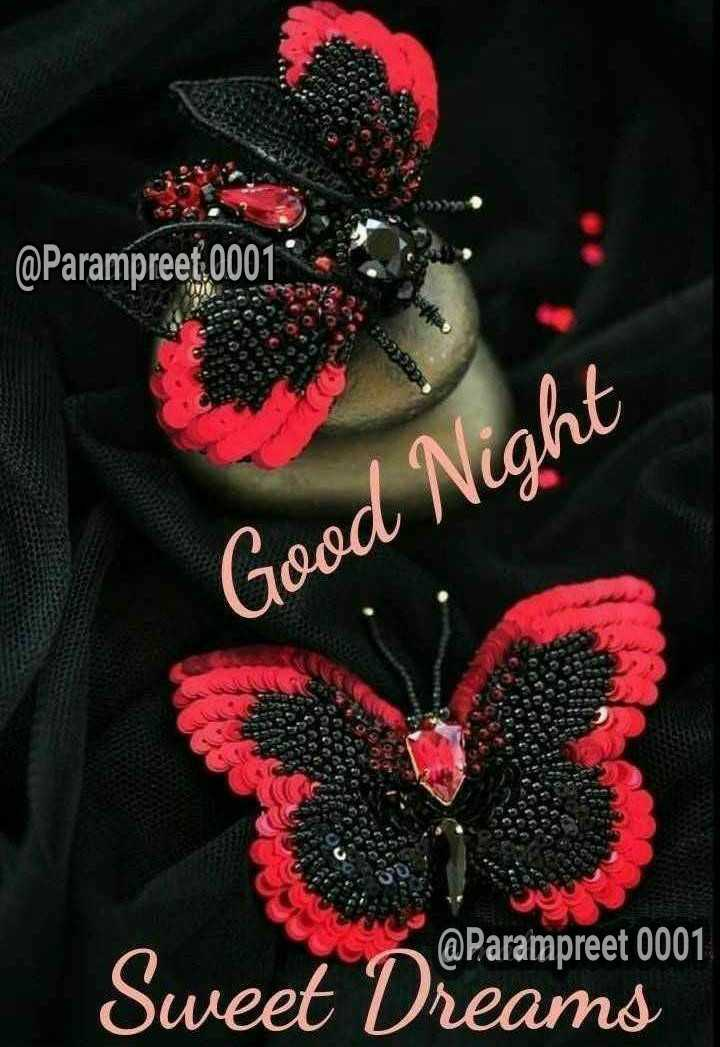 शुभरात्रि - ! @ Parampreet . 0001 Good Night @ Parampreet 0001 Sweet Dreams - ShareChat