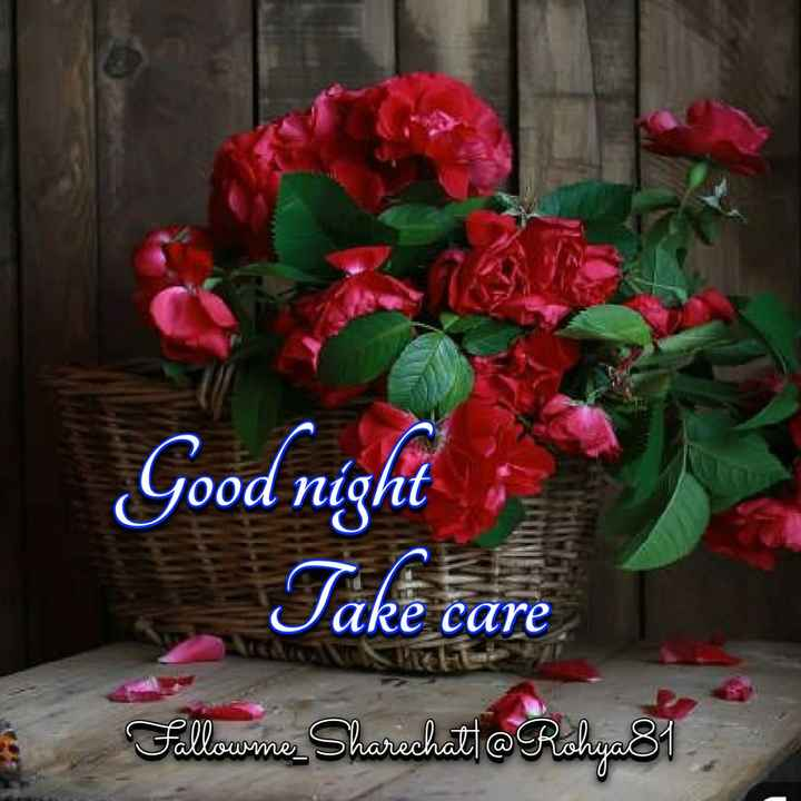 😴शुभ रात्री😴 - Good night Take Falloume Sharechat @ Rohya81 - ShareChat