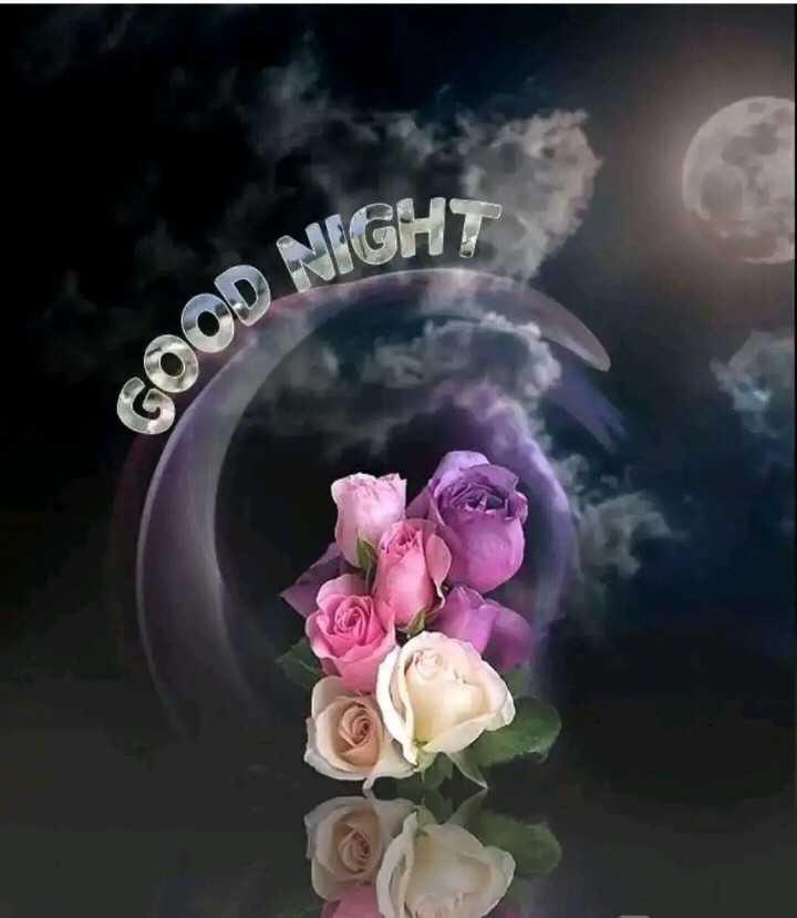 😴शुभ रात्री - NIGHT w Goo - ShareChat