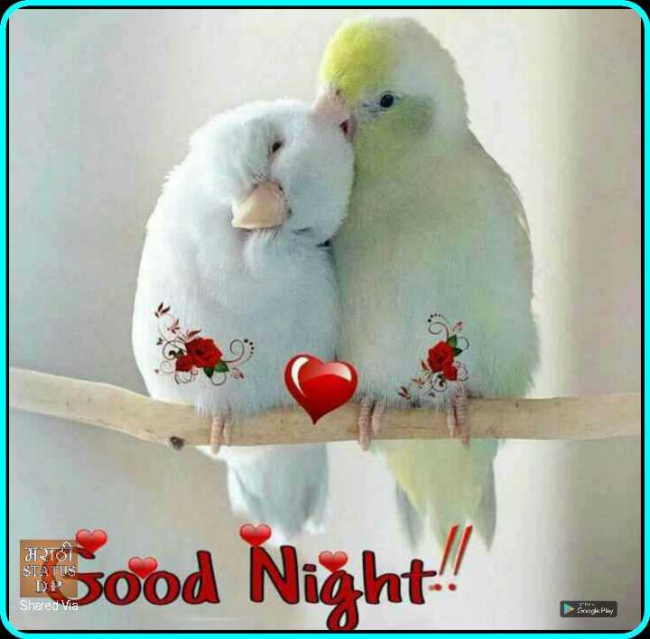 😴शुभ रात्री😴 - HRTOT STATUS Good Night ! Shared Via G igle Play - ShareChat