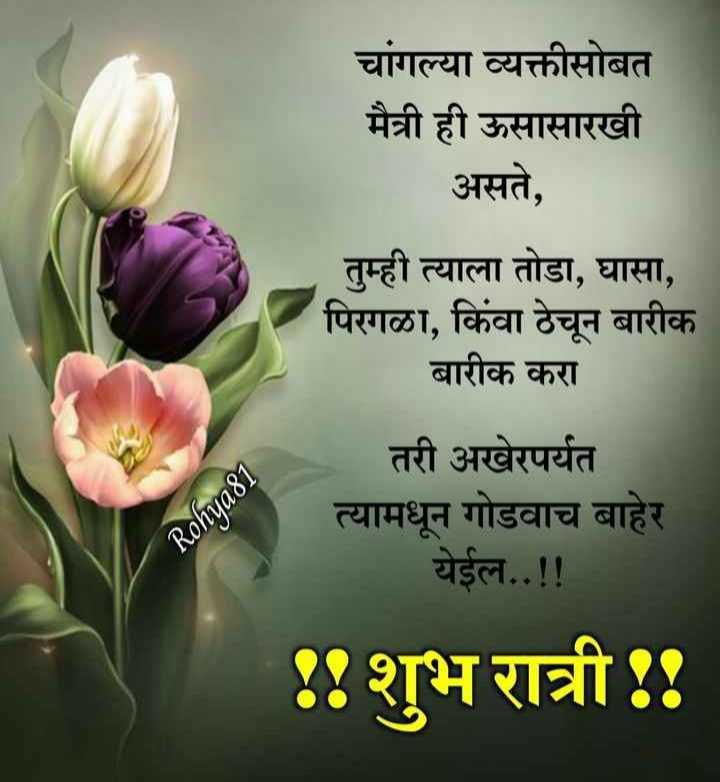 😴शुभ रात्री - चांगल्या व्यक्तीसोबत मैत्री ही ऊसासारखी असते , तुम्ही त्याला तोडा , घासा , पिरगळा , किंवा ठेचून बारीक बारीक करा तरी अखेरपर्यत त्यामधून गोडवाच बाहेर येईल . . ! ! Rohya81 . : शुभ रात्री : - ShareChat