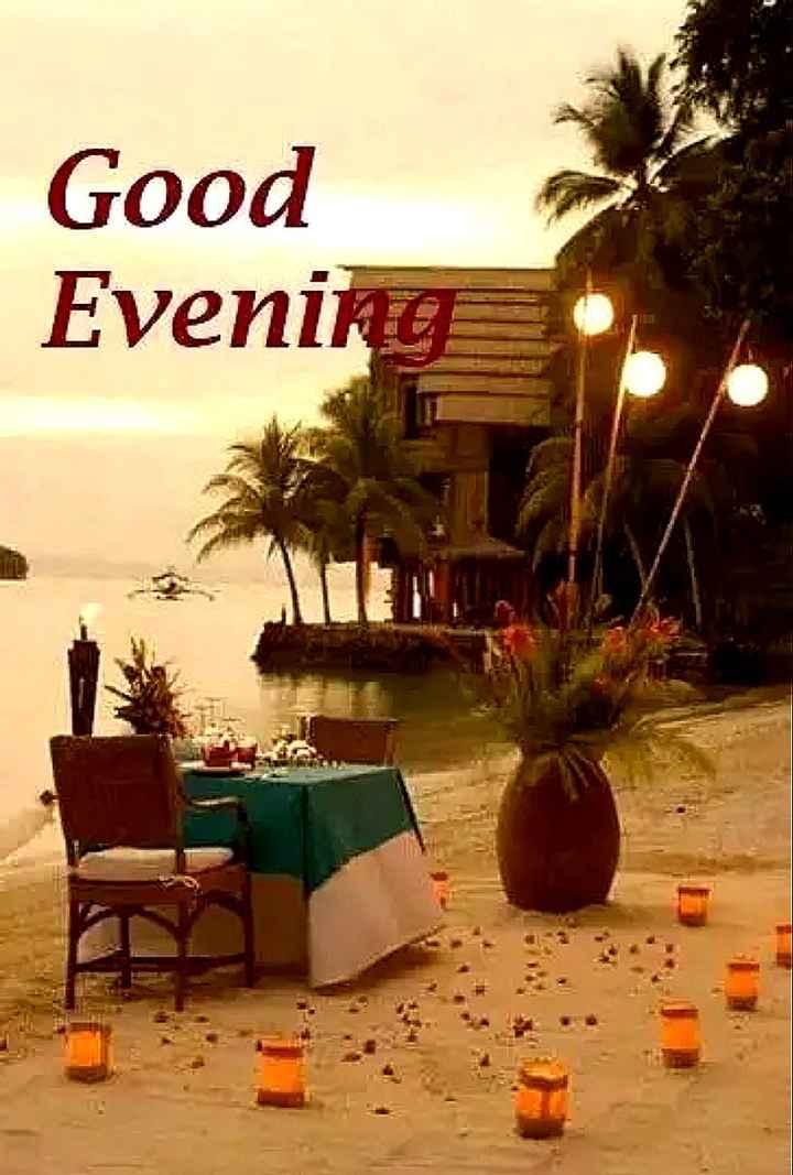 🌜 शुभ संध्या🙏 - Good Evening - ShareChat