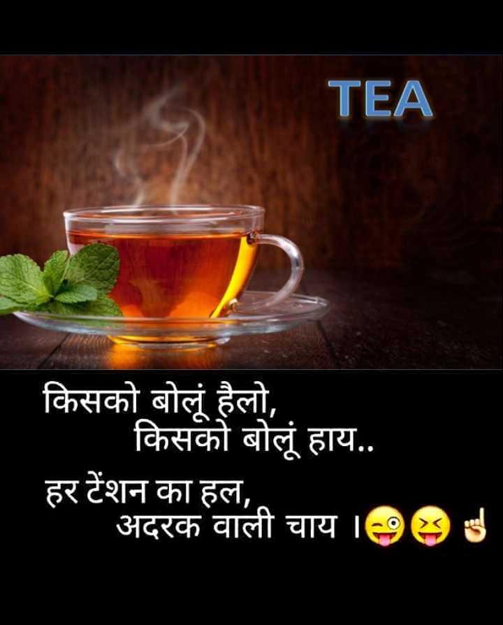 🌜 शुभ संध्या🙏 - TEA किसको बोलूं हैलो , किसको बोलूं हाय . . हर टेंशन का हल , अदरक वाली चाय 1985 - ShareChat