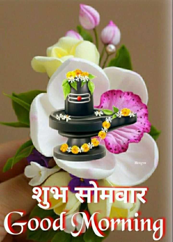 🌷शुभ सोमवार - - Mangra शुभ सोमवार Good Morning - ShareChat