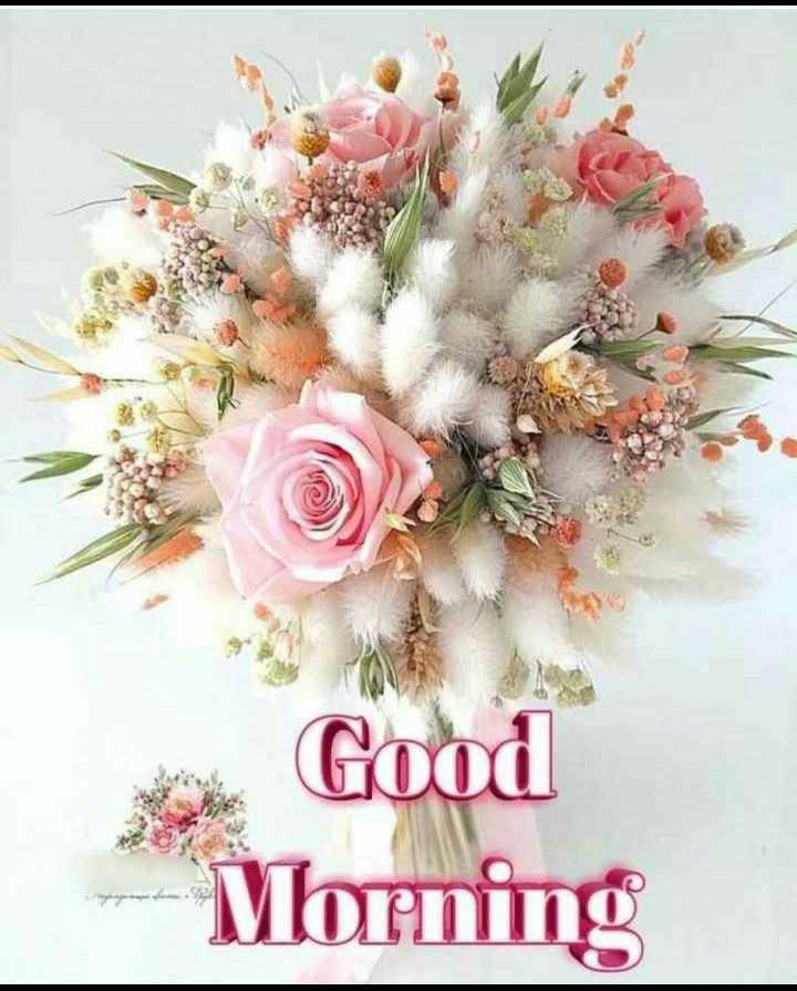 🌷शुभ सोमवार - US Good Morning - ShareChat