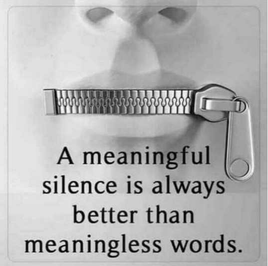 🖋 शेयरचैट Quotes - A meaningful silence is always better than meaningless words . - ShareChat