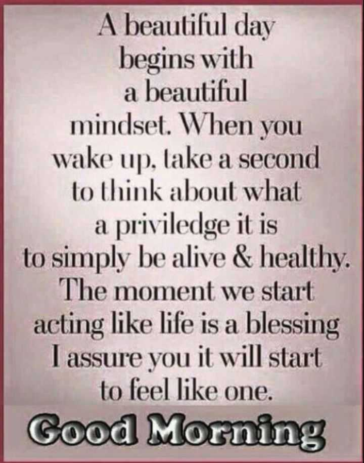 🖋 शेयरचैट Quotes - A beautiful day begins with a beautiful mindset . When you wake up , take a second to think about what a priviledge it is to simply be alive & healthy . The moment we start acting like life is a blessing I assure you it will start to feel like one . Good Morning - ShareChat