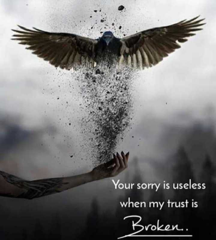 🖋 शेयरचैट Quotes - Your sorry is useless when my trust is Broken . - ShareChat