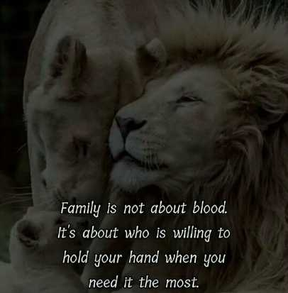 🖋 शेयरचैट Quotes - Family is not about blood . It ' s about who is willing to hold your hand when you need it the most . - ShareChat
