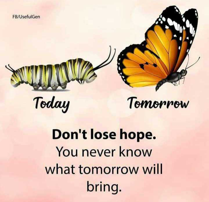 🖋 शेयरचैट Quotes - FB / Usefulgen Today Tomorrow Don ' t lose hope . You never know what tomorrow will bring . - ShareChat