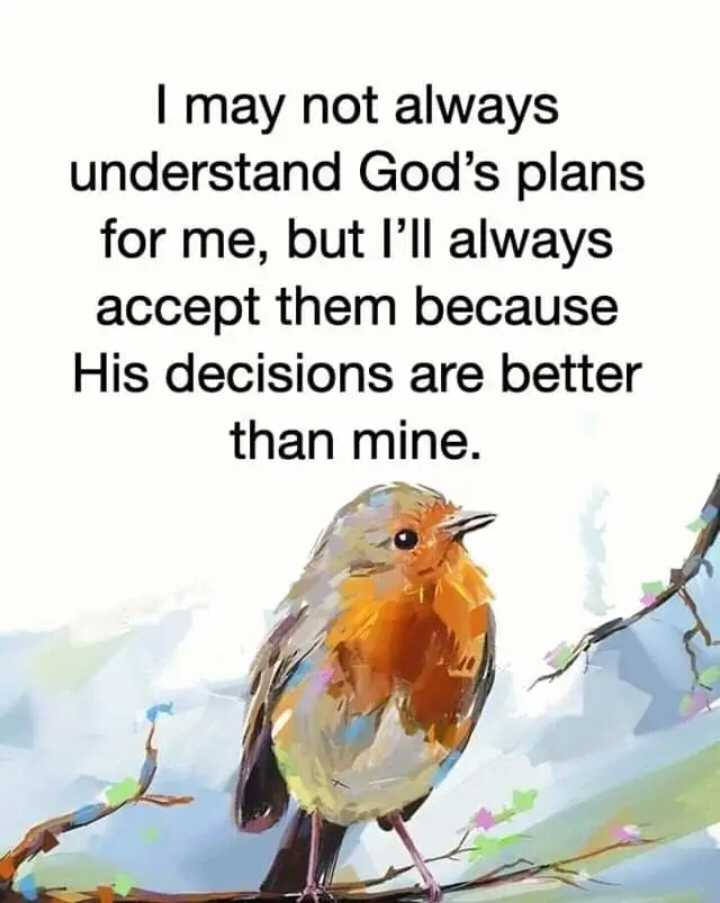 🖋 शेयरचैट Quotes - I may not always understand God ' s plans for me , but I ' ll always accept them because His decisions are better than mine . - ShareChat