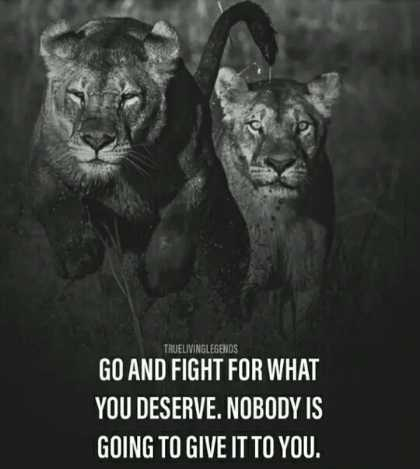 🖋 शेयरचैट Quotes - TRUELIVIN KLEGENDS GO AND FIGHT FOR WHAT YOU DESERVE . NOBODY IS GOING TO GIVE IT TO YOU . - ShareChat