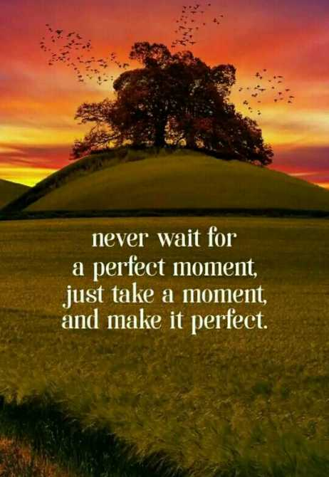 🖋 शेयरचैट Quotes - never wait for a perfect moment , just take a moment , and make it perfect . - ShareChat