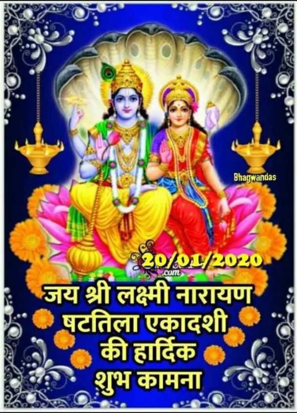 🌷षटतिला एकादशी - Bhagwandas C . com 230 / OL / 2020 जय श्री लक्ष्मी नारायण • षटतिला एकादशी की हार्दिक शुभ कामना VINOD - ShareChat