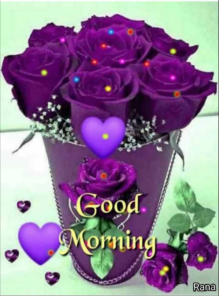 🌞सुप्रभात 🌞 - ( Good . Morning Rana - ShareChat
