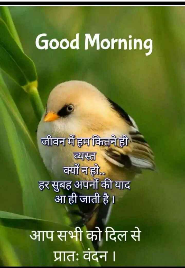 🌄  सुप्रभात - Good Morning जीवन में हम कितने ही व्यस्त क्यों न हो . . हर सुबह अपनों की याद आ ही जाती है । आप सभी को दिल से प्रातः वंदन । - ShareChat