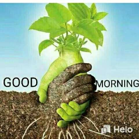 🌄  सुप्रभात - GOOD MORNING To - ShareChat