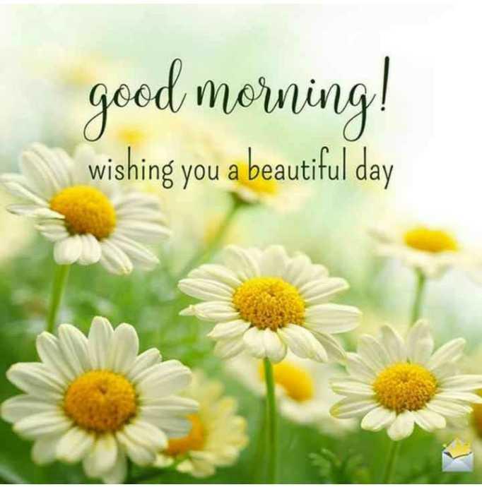 🌄सुप्रभात - good morning ! wishing you a beautiful day - ShareChat
