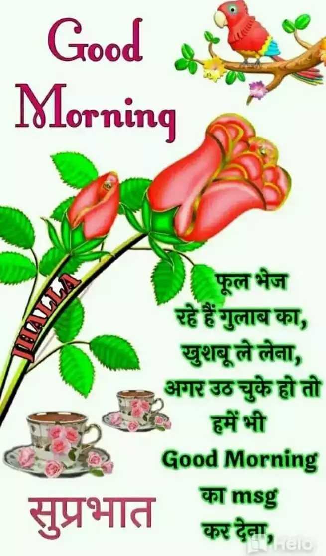 🌹🌹 सुप्रभात🌹🌹 - _ _ _ Good Morning । फूल भेज रहे हैं गुलाब का , खुशबू ले लेना , अगर उठ चुके हो तो हमें भी Good Morning का msg पर C सप्रभात कर देना , - ShareChat