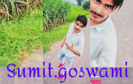 🌲हरी भरी घास - WAS Sumit Goswami - ShareChat