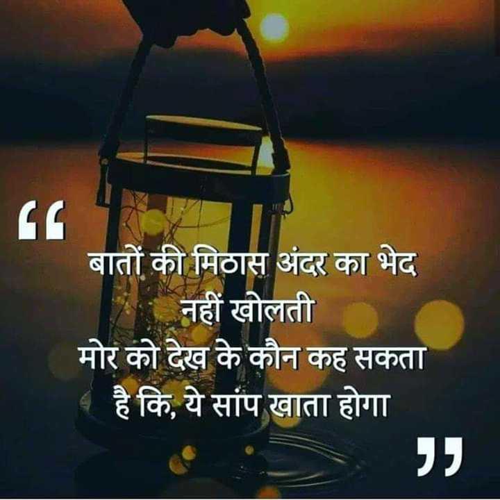 📓 हिंदी साहित्य - बातों की मिठास अंदर का भेद नहीं खोलती मोर को देख के कौन कह सकता व है कि , ये सांप खाता होगा - ShareChat