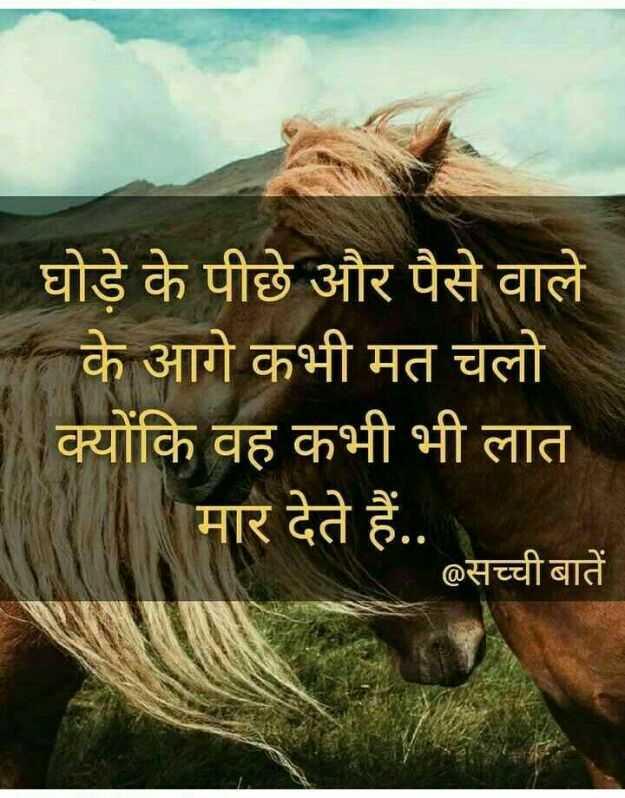 📓 हिंदी साहित्य - घोड़े के पीछे और पैसे वाले के आगे कभी मत चलो क्योंकि वह कभी भी लात मार देते हैं . . . @ सच्ची बातें - ShareChat