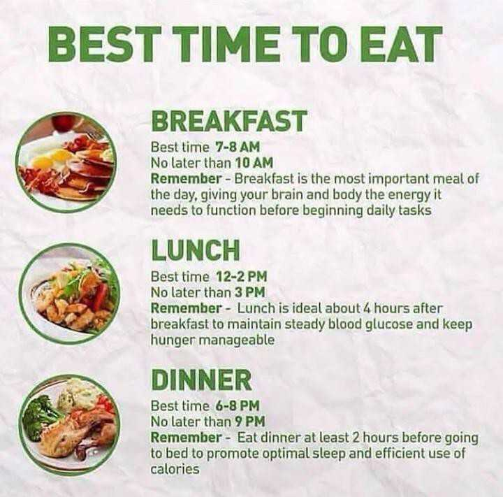 🥑हेल्दी फूड - BEST TIME TO EAT BREAKFAST Best time 7 - 8 AM No later than 10 AM Remember - Breakfast is the most important meal of the day , giving your brain and body the energy it needs to function before beginning daily tasks LUNCH Best time 12 - 2 PM No later than 3 PM Remember - Lunch is ideal about 4 hours after breakfast to maintain steady blood glucose and keep hunger manageable DINNER Best time 6 - 8 PM No later than 9 PM Remember - Eat dinner at least 2 hours before going to bed to promote optimal sleep and efficient use of calories - ShareChat