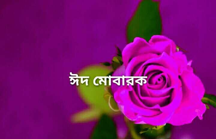 ঈদ মোবারক - ঈদ মােবারক ) - ShareChat