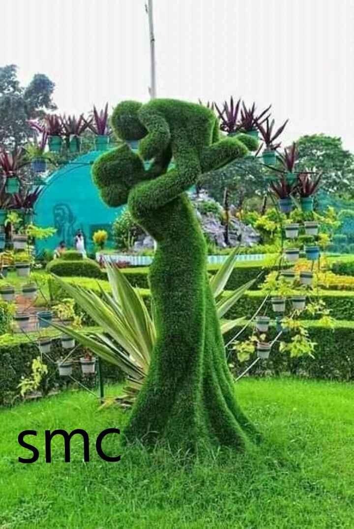 মমতাময়ী মা - smc - ShareChat