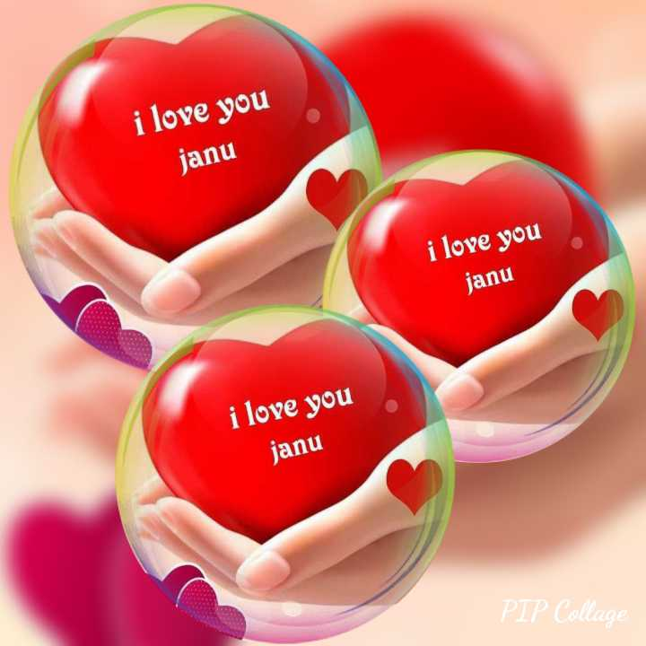 মোবাইলের ওয়েলপেপার - i love you janu i love you janu i love you janu PIP Collage - ShareChat