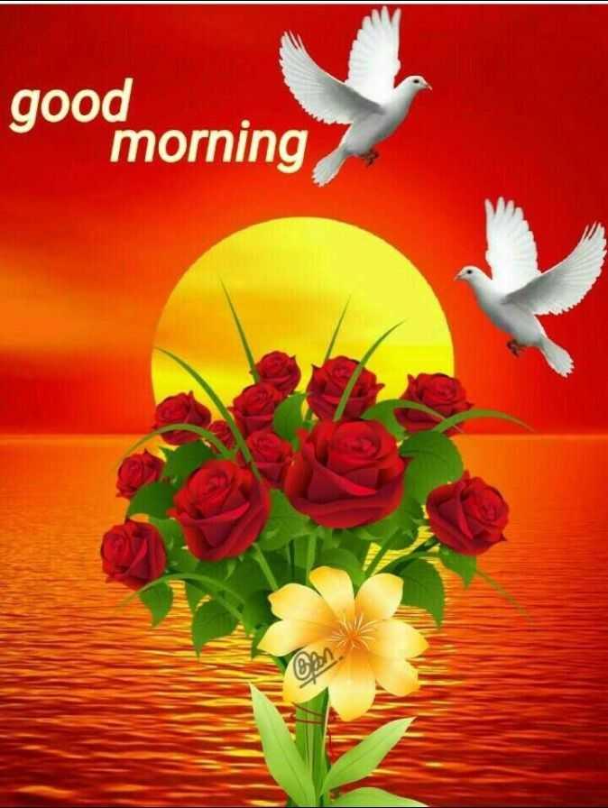 🙌শুভকামনা - good morning an - ShareChat