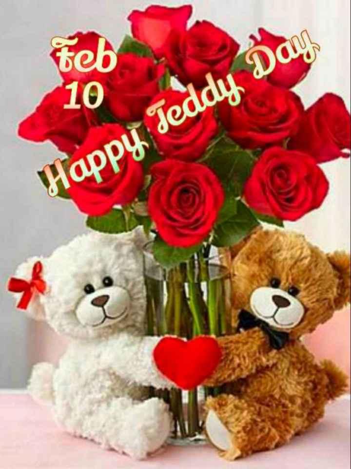 🌑শুভ রাত্রি - Feb Happy Teddy Day - ShareChat