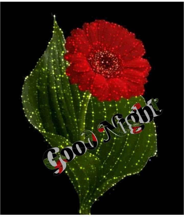 🌑শুভ রাত্রি - Gooi Night - ShareChat