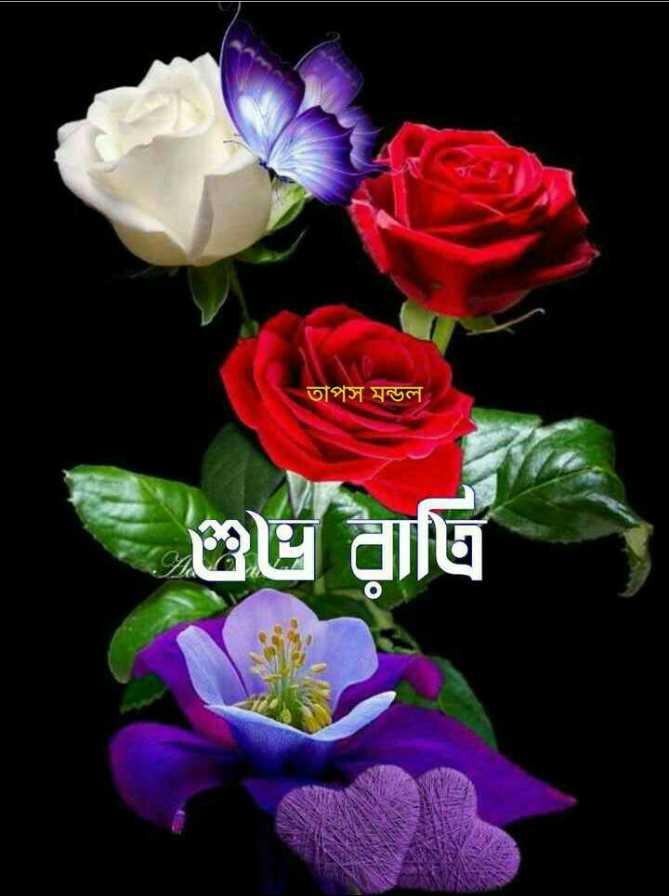 🌑শুভ রাত্রি - তাপস মন্ডল । - ShareChat