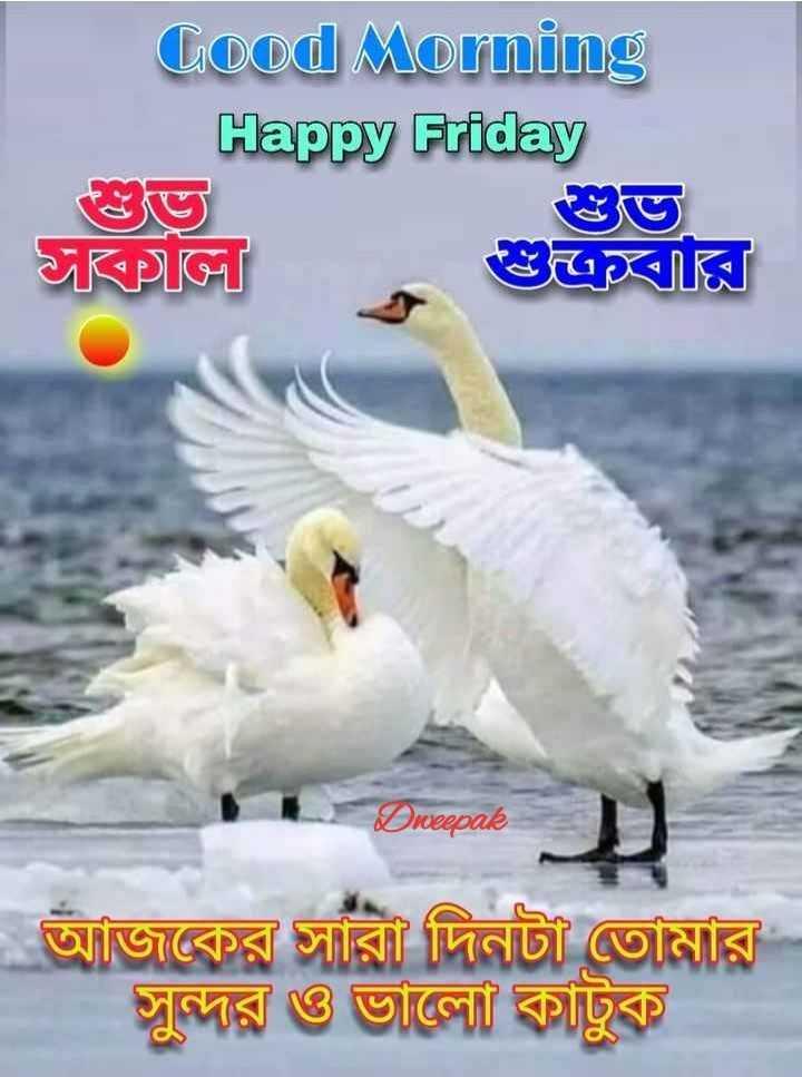 🌹🌹🕡🕡🕡 শুভ সকাল 🕡🕡🕡🌹🌹 - Good Morning Happy Friday Tikpor Dweepak আজকের সারা দিনটা তােমার সুন্দর ও ভালাে কাটুক - ShareChat