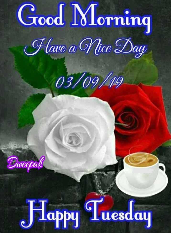 💗💗🌹💗💗👈শুভ সকাল👉💗💗🌹💗💗 - Good Morning Have a Nice Day 03 / 09 / 19 Dweepak Happy Tuesday - ShareChat