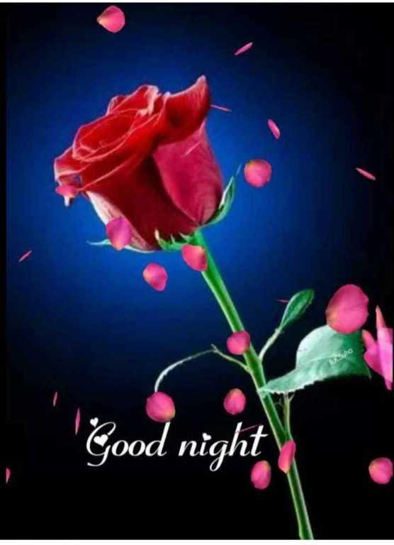 😴 শুভৰাত্ৰি - Ruha Good night - ShareChat