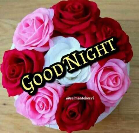 😴 শুভৰাত্ৰি - GOOD NIGHT @ salmantebeevi - ShareChat
