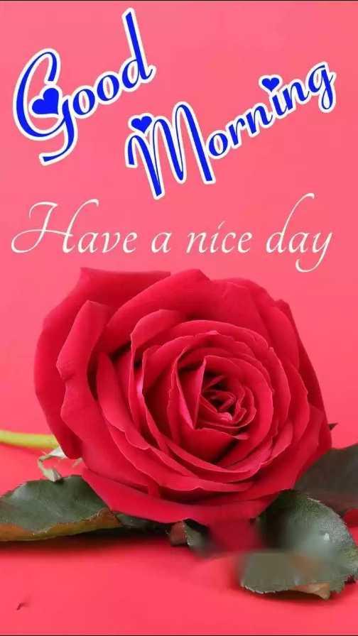 🌞সুপ্রভাত - Good Have a nice day - ShareChat