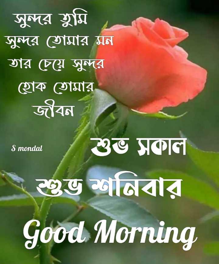 🌞সুপ্রভাত - সুন্দর তুমি সুন্দর তােমার মন তার চেয়ে সুন্দর ।   হােক তােমার জীবন । শুভ সকাল S mondal শুভ শনিবার Good Morning - ShareChat