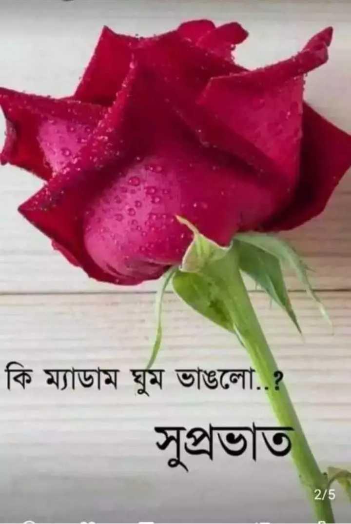 🌞সুপ্রভাত - কি ম্যাডাম ঘুম ভাঙলাে . . ? সুপ্রভাত 2 / 5 - ShareChat