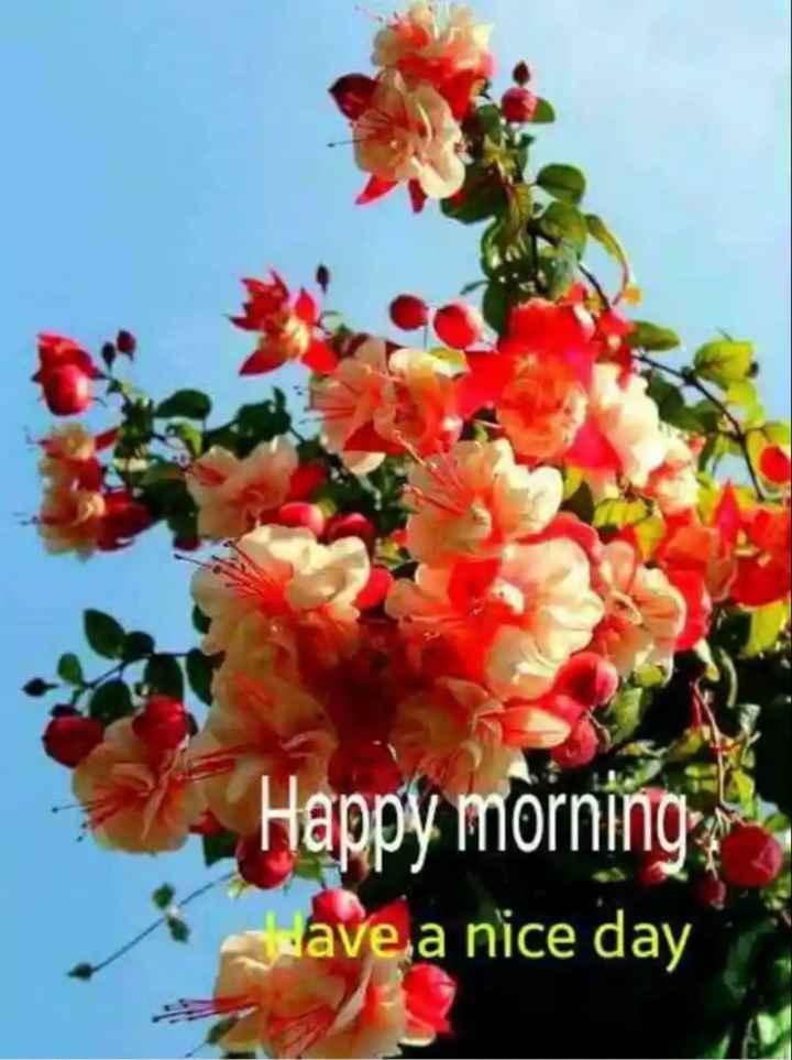 🌞সুপ্রভাত - Happy morning wave a nice day - ShareChat