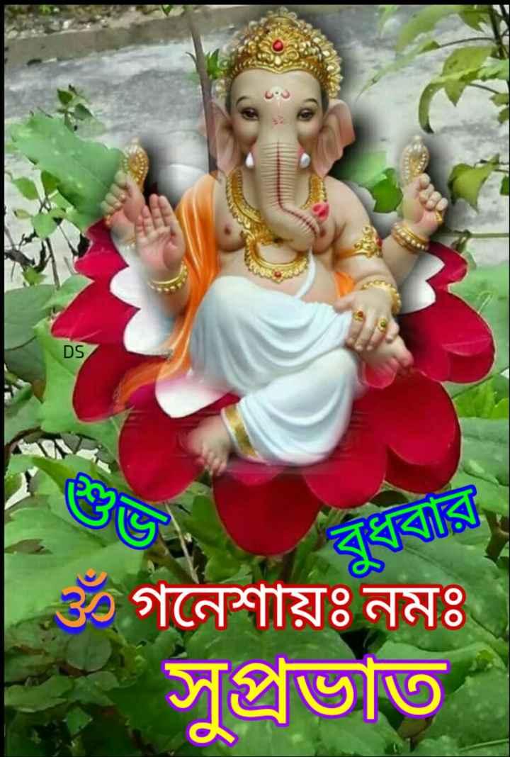 🌞সুপ্রভাত - DS 3 গনেশায়ঃ নমঃ সুপ্রভাত - ShareChat