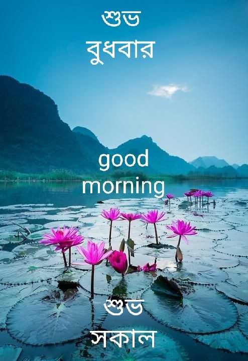 🌞সুপ্রভাত - শুভ বুধবার good morning সকাল - ShareChat