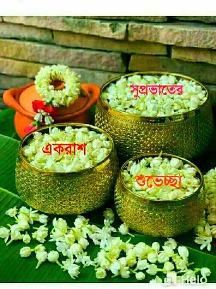 🌞সুপ্রভাত - সুপ্রভাতের . একরাশ শুভেচ্ছা - ShareChat