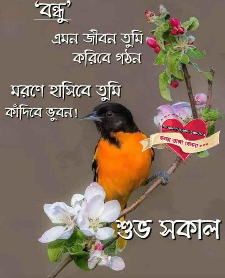 🌞সুপ্রভাত - এমন জীবন তুমি । করিবে গঠন । মরণে হাসিবে তুমি কাঁদিবে ভূবন ! fb . com / hridoybhangabedona হাদয় ভস বেদনা শুভ সকাল - ShareChat