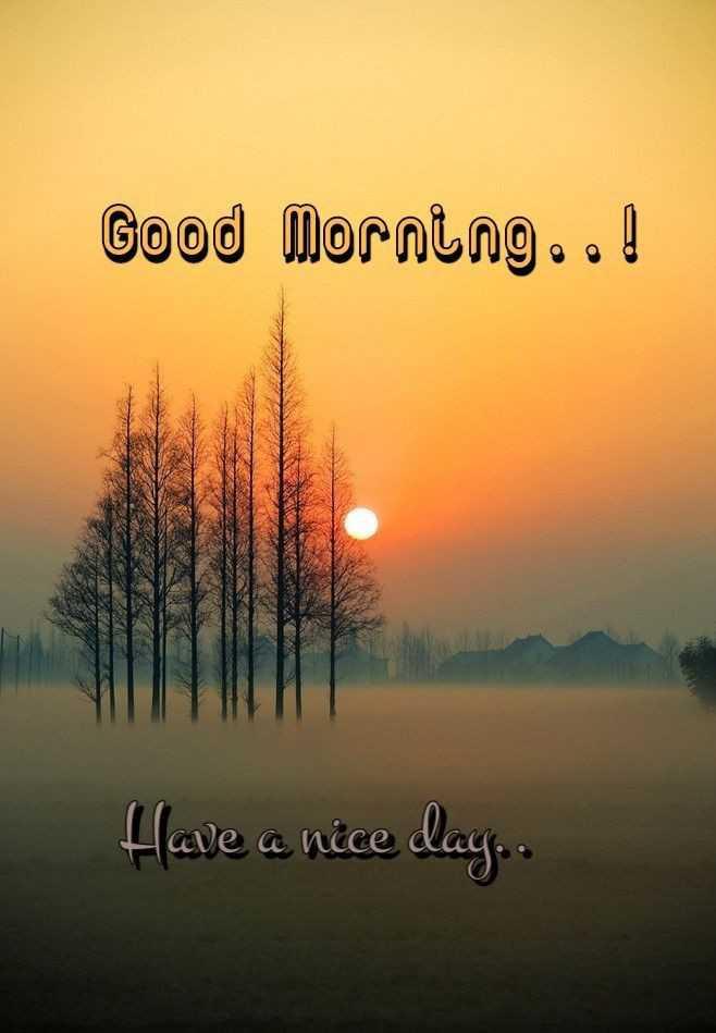 🌞সুপ্রভাত - Good morning . od Have a nice day . . - ShareChat
